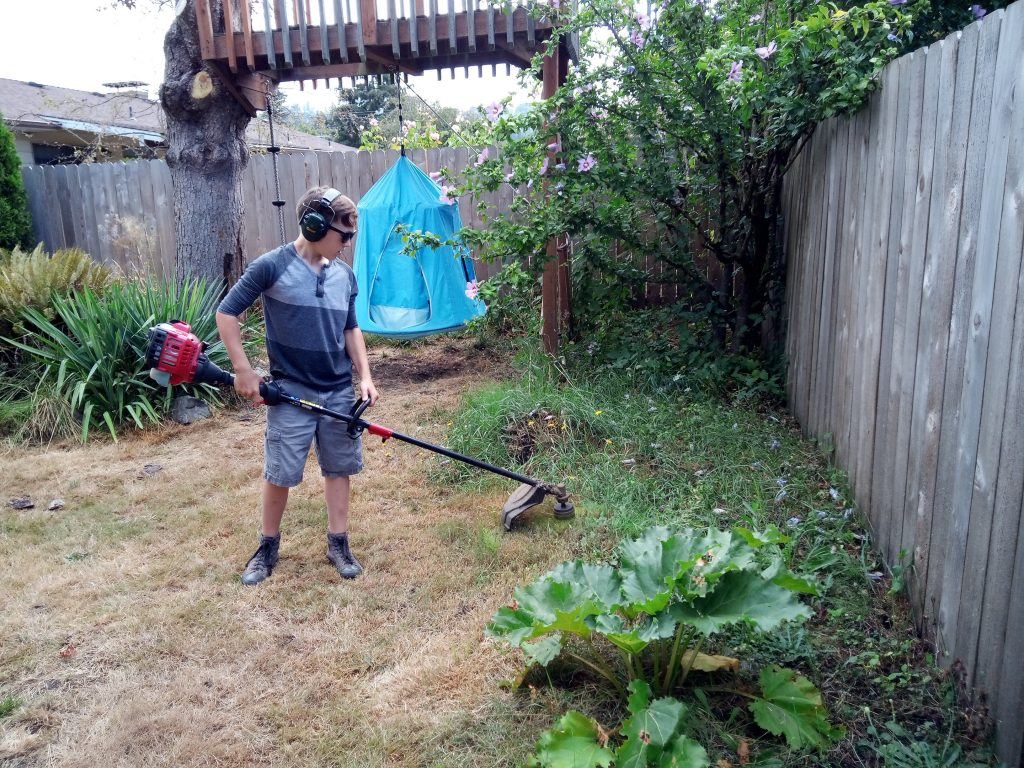 Rick with his lawnmower 2